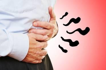 virus darm magen